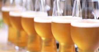 2444 top 5 las cervezas mas vendidas en la birreria