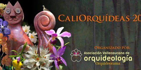 Cali Orquídeas 2019