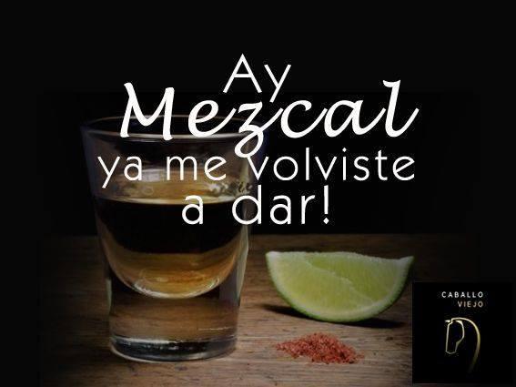 NOCHE DE MEZCAL