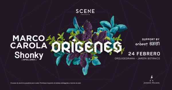 Origenes 2018