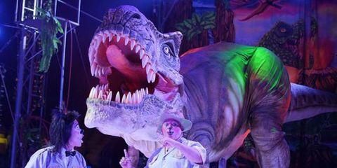 Circo de Dinosaurios