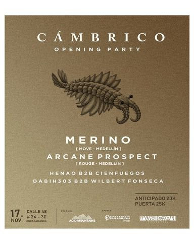 Merino at Cámbrico