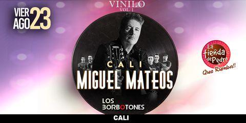Miguel Mateos en Concierto