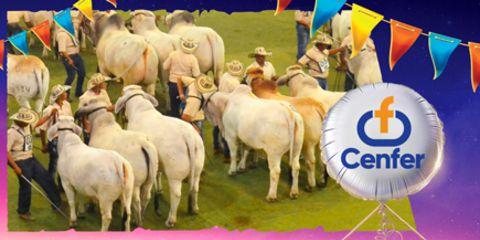 Exposición Nacional Pecuaria y Agroindustrial