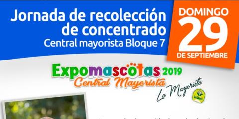 Expomascotas 2019