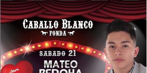 Mateo Bedoya La Voz Joven de la Música Popular