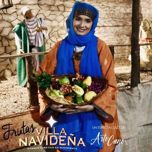 villanavideña1
