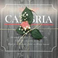Cambria Café Resto - Medellín